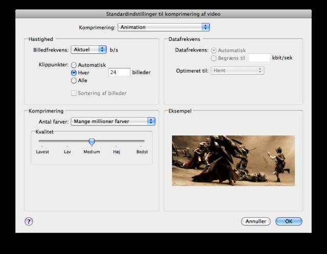 Export video settings window